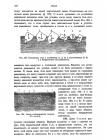 стр. 196