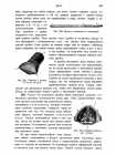 стр. 383